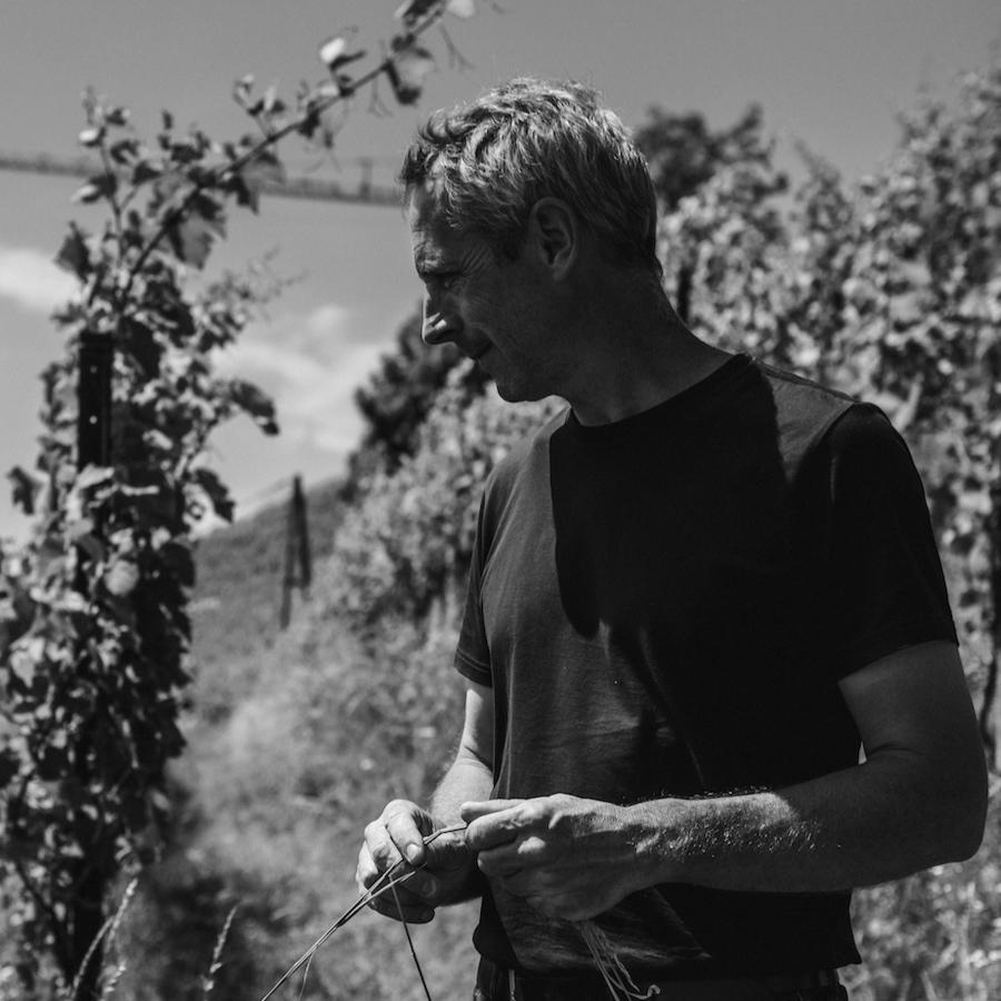 Andreas Tscheppe_profile